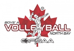 boys_a_volleyball_logo