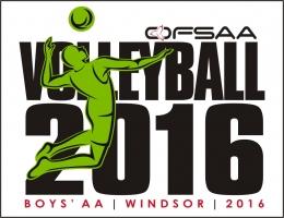 volleyballboysaalogo16