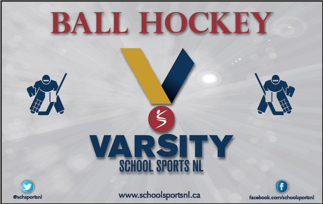 This image has an empty alt attribute; its file name is ssnl-ball-hockey-logo-2017-C-6HMSYXcAAdDO8.jpg